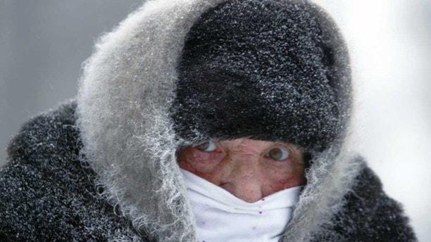 En rejält påklädd människa i kylan. Foto: Mikhail Metzel/TT.