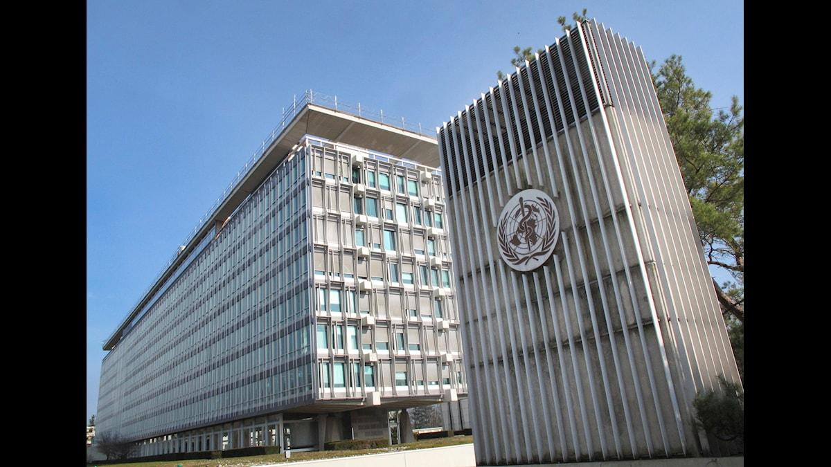 Två stenbyggnader som är WHO:s kontor