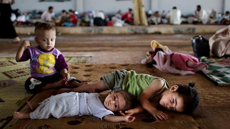 Barnen ligger och sover på golvet. I bakgrunden syns en grupp vuxna.