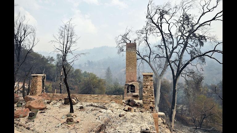 Det brinner i Kaliforninen. Foto:  AFP