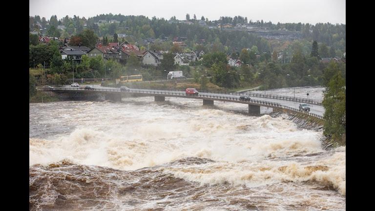 På flera platser i Norge är det stora översvämningar. Foto: Terje Bendiksby/ TT.
