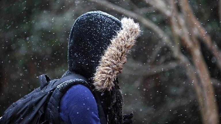 En pojke i blå vinterjacka