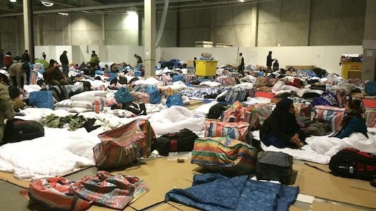 nyanlända flyktingar i Malmö