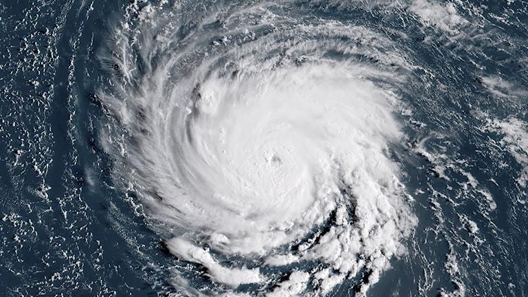 Fotot visar orkanen Florence som gör en virvel i havet