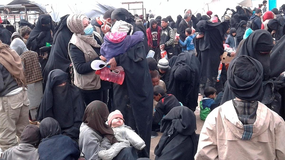 Flyktingläger Al Hol Syrien