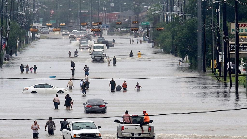 Människor går på en översvämmad gata i Houston.