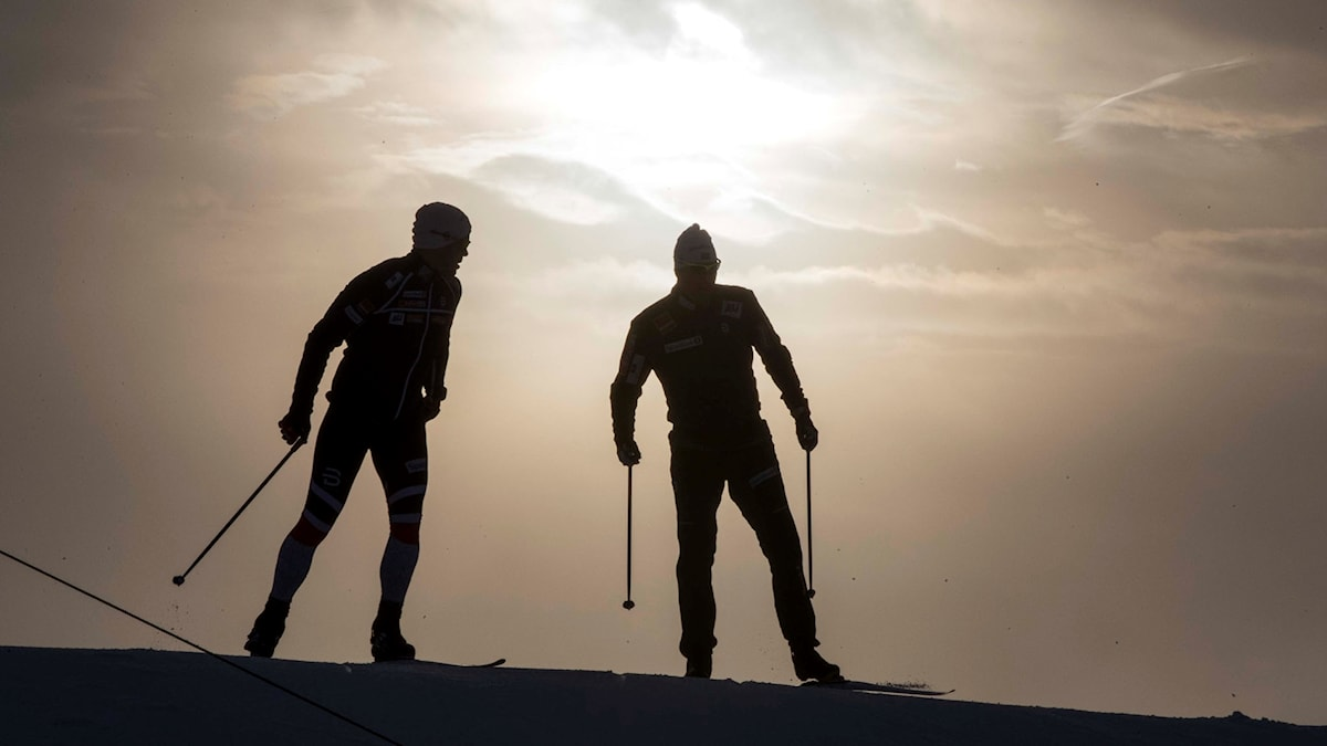 På fotot syns två skidåkare i motljus.