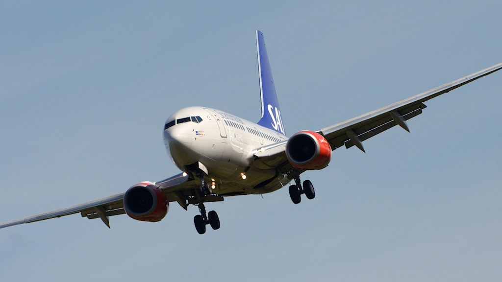Bilden visar ett flygplan av modellen 737-600.