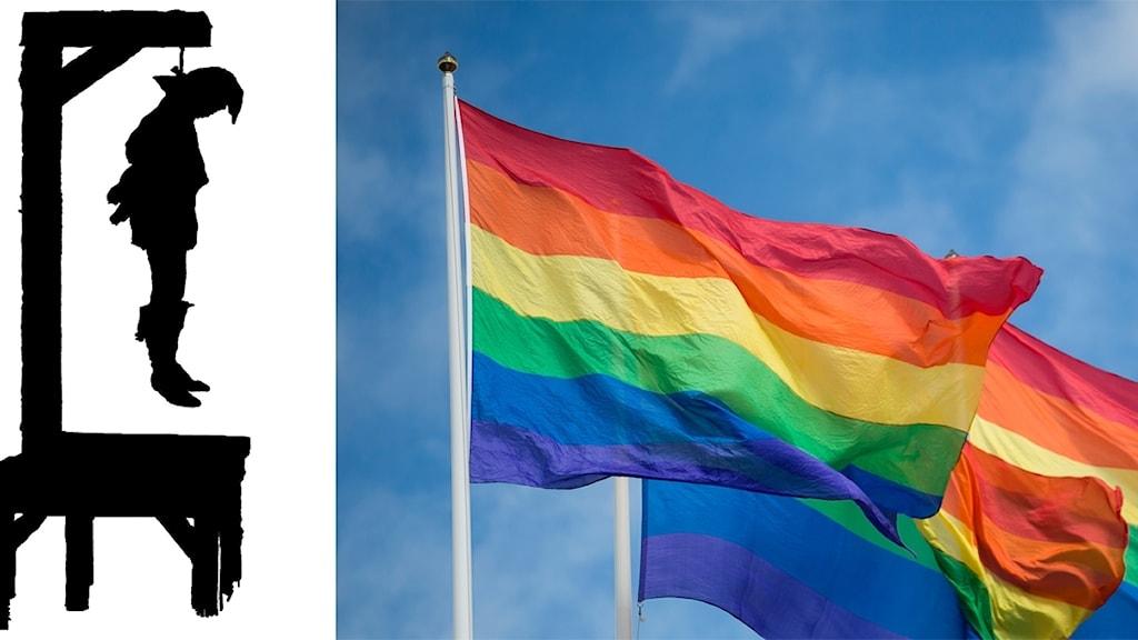Flaggan har ränder i färgerna: rött, orange, gult, grönt, blått och lila.
