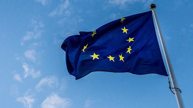 På fotot syns en blå flagga med gula stjärnor i en ring.
