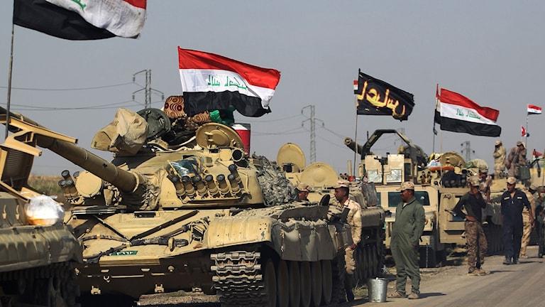 Flera stridsvagnar åker på vägen. Från dem vajar irakiska flaggor.