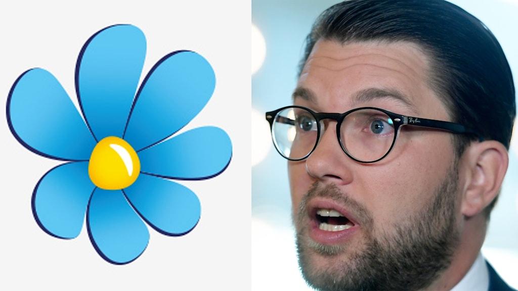 På fotot syns Jimmie åkesson. Han har skägg och glasögon. Håret är kammat bakåt.