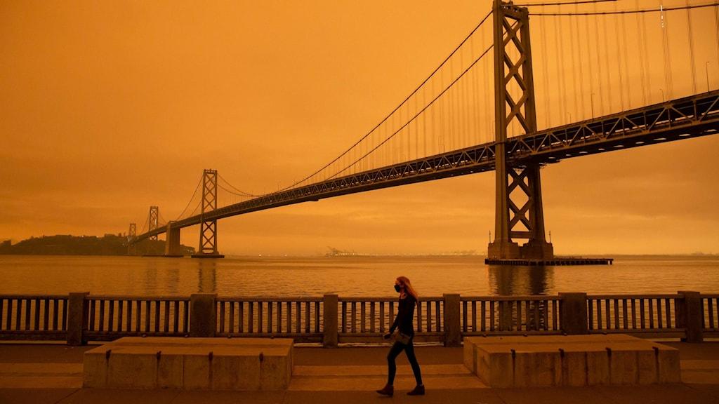 På bilden ser man en bro, Golden Gate-bron i San Fransisco, och man ser en gul-orange himmel.