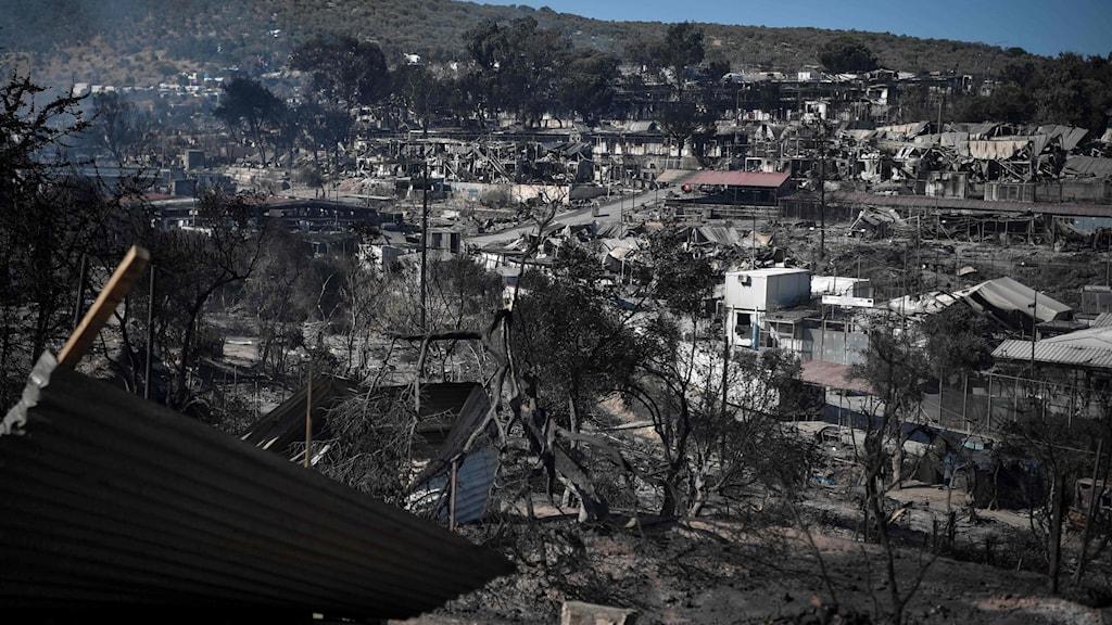 På bilden ser man ett landskap, som mest går i grått och med svartbrända träd och några hus.