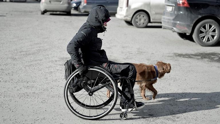 På fotot är en person som kör sin rullstol och bredvid går en hund.