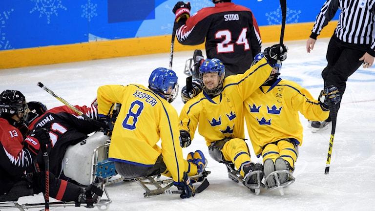 Sverige jublar i en paraishockeymatch under Paralympics 2018 i Sydkorea