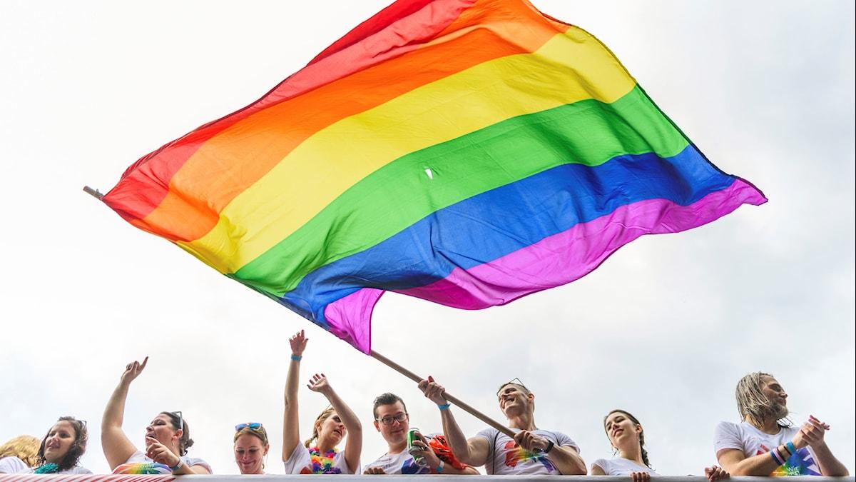 Bilden visar personer med en regnbågsflagga.