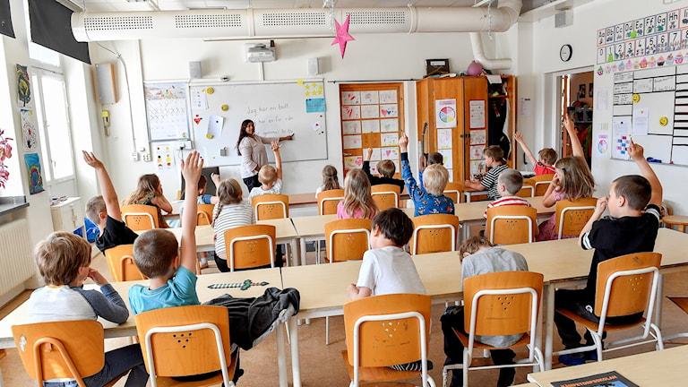 Flera elever sitter vid sina skolbänkar och räcker upp handen till en lärare som står vid tavlan.