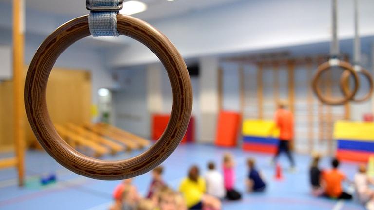 Två romerska ringar i en gymnastikhall.