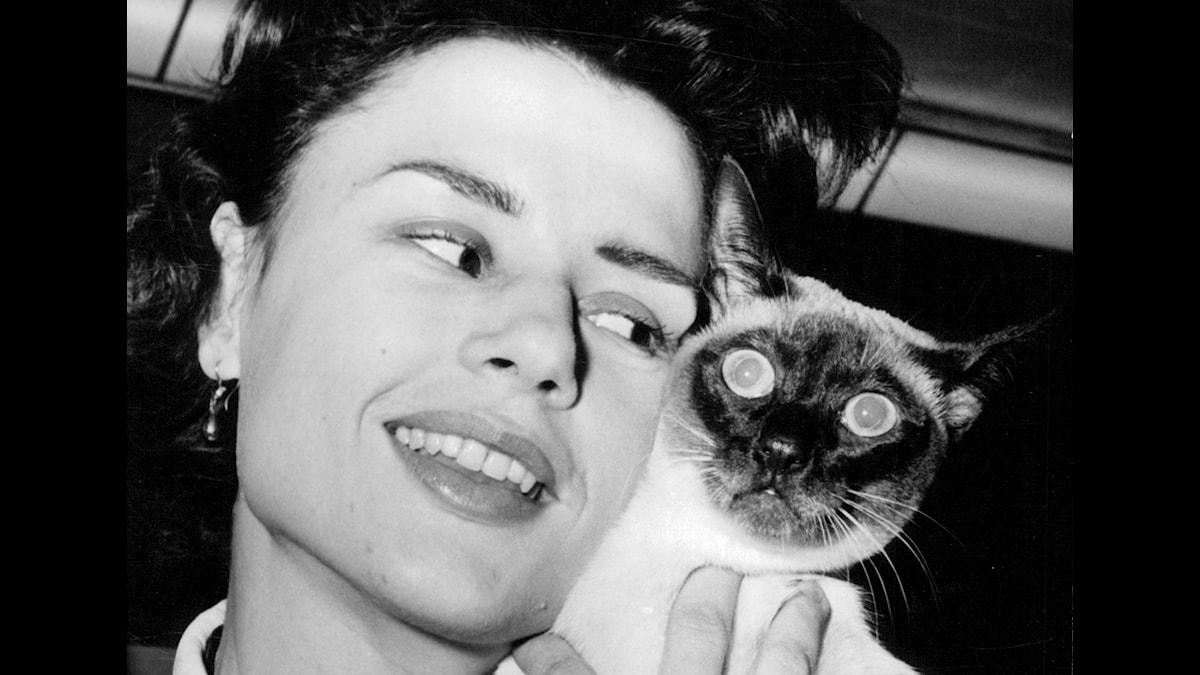 Skådespelaren Harriet Andersson med sin katt Titus vid en kattutställning i Kungshallen
