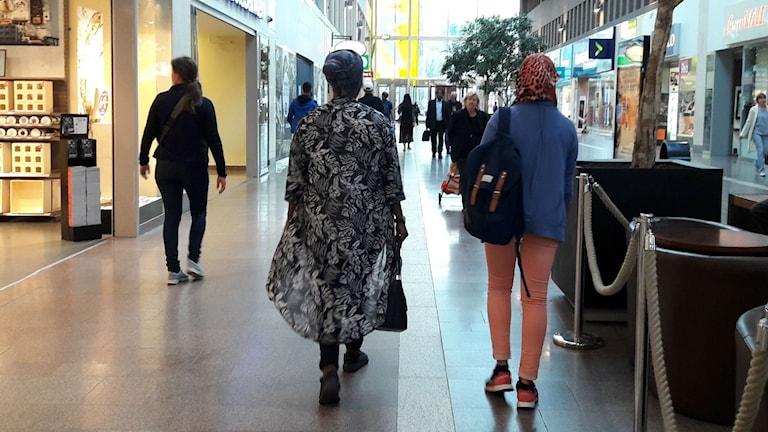 Hibak och Hodan i Skärholmen