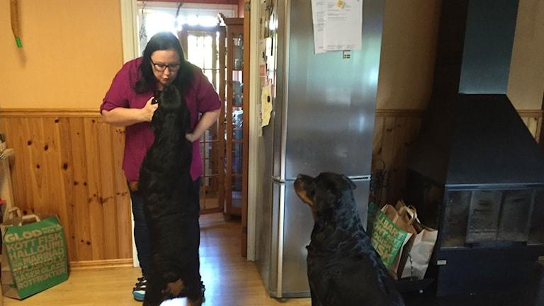 Ann-Sofie Stolpe och hennes hundar