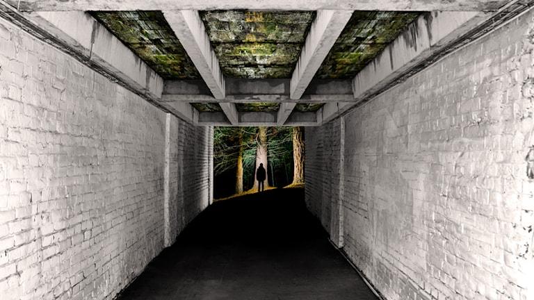 De dödas röster – en thrillerpodd av Sara Bergmark. Premiär 1 juli.