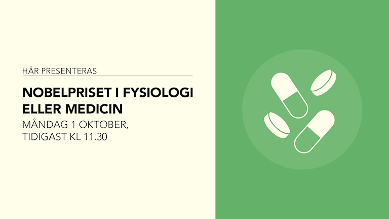 Här presenteras Nobelpriset i fysiologi eller medicin. Måndag 1 oktober, tidigast kl 11.30