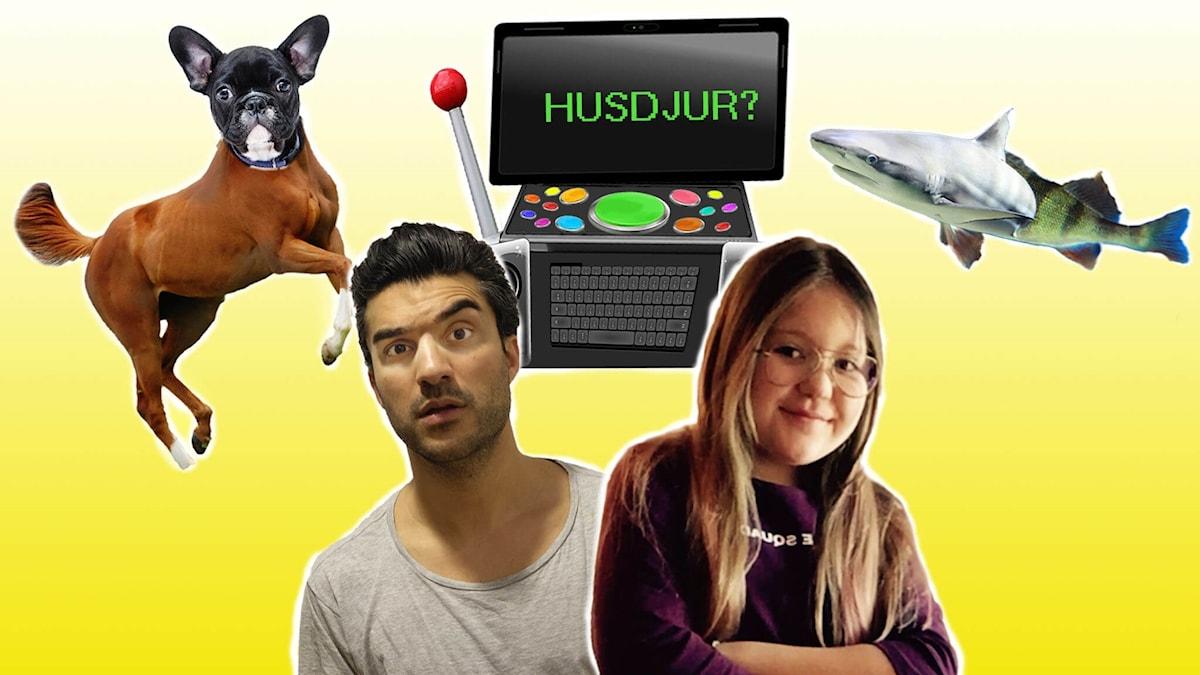 Farzad, Farzads framtidsdator med konstiga knappar, en häst med ett hundhuvud och en abborre med ett hajhuvud.
