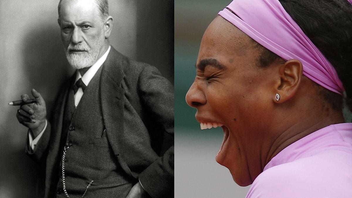 Sigmund Freud samlade på skratt under hela sitt liv.