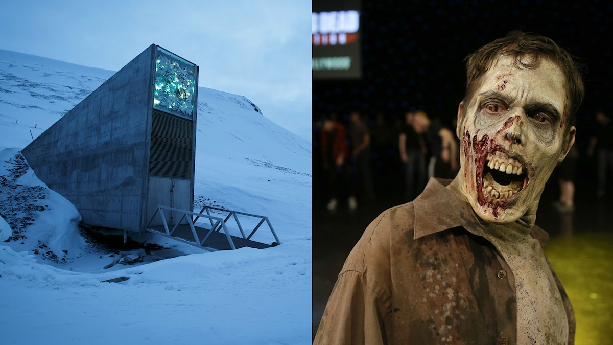 Hjälper frölagret på Svalbard om zombieapokalypsen kommer?