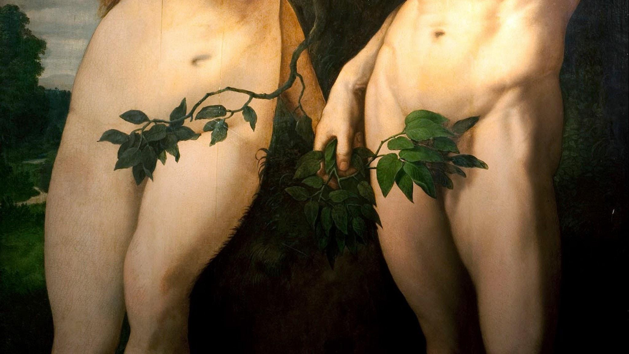 """Frans_Floris I: """"The Fall of Man"""", ca 1560 (detalj)"""