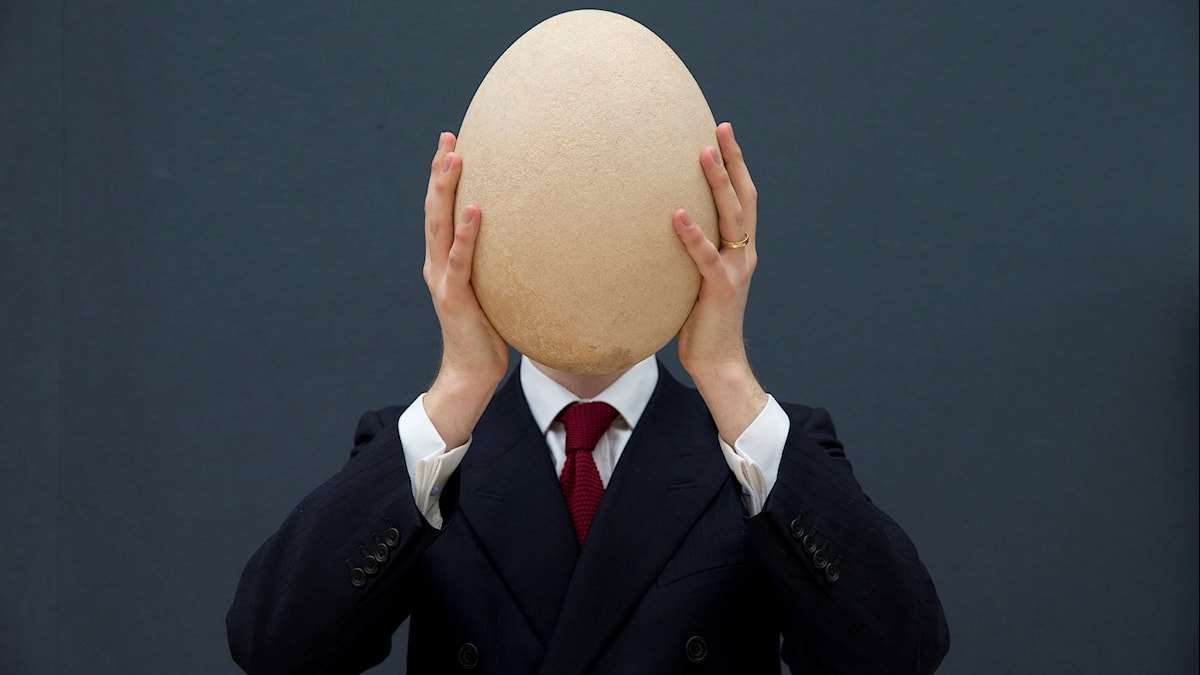 Christie's scientific specialist James Hyslop poses for photographs with a sub-fossilized pre-17th century Elephant Bird egg at the auction house's premises in London, Wednesday, March 27, 2013
