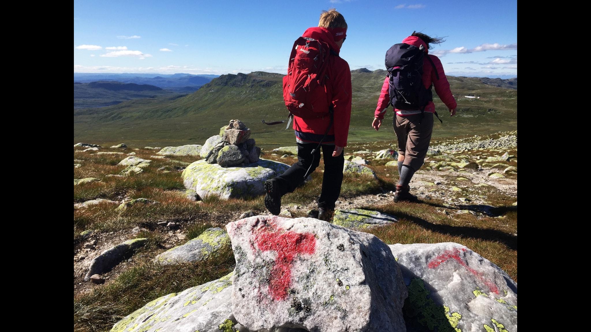 """""""Semestervandrandet är som ett nedärvt kollektivt urminne från den tid då alla mer eller mindre levde som nomader"""", menar Per J Andersson"""