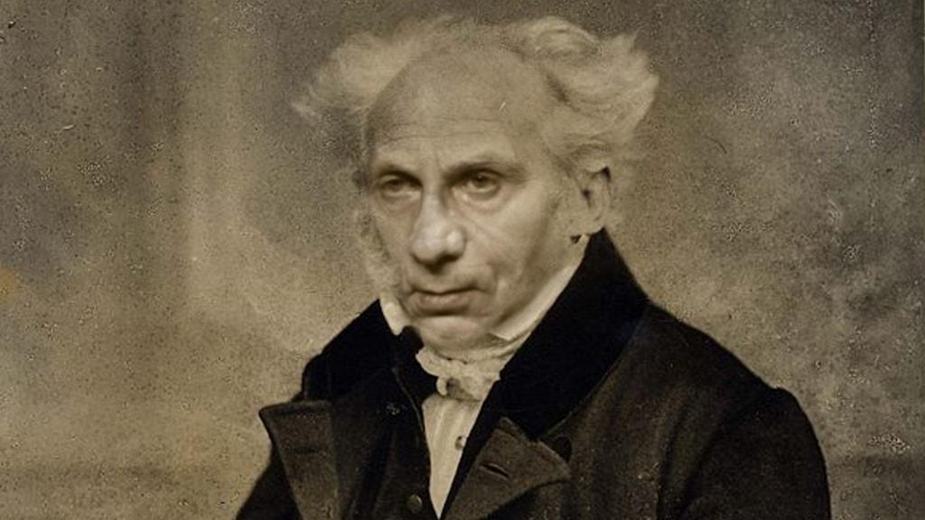 En där Michel Houellebecqs ansikte förts ihop med Arthur Schopenhauers.