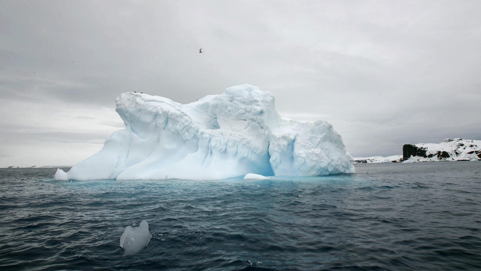 Ett smältande isberg framför King Georges Island, Antarktis.
