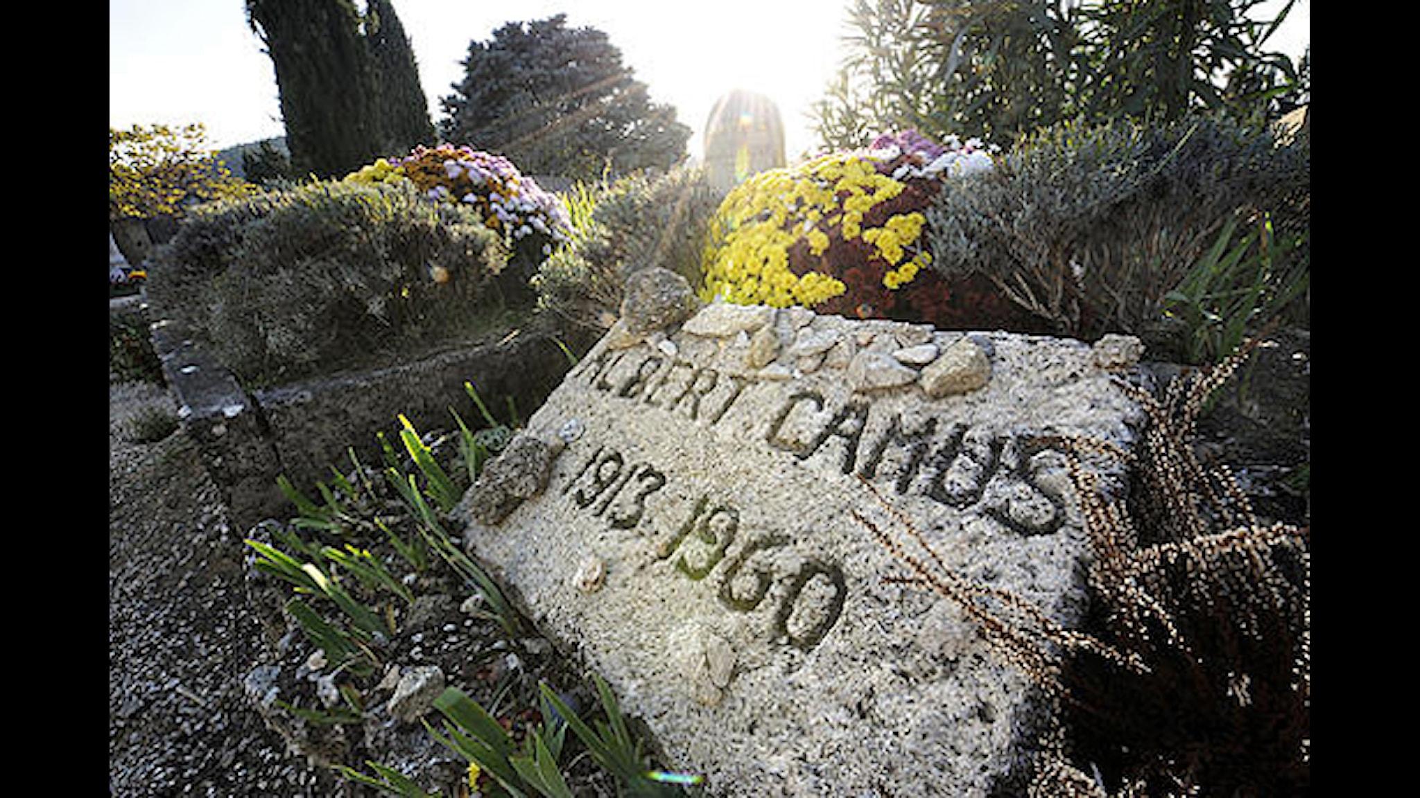 Albert Camus gick ur tiden för 50 år sedan. Nu vill Frankrikes president Nicolas Sarkozy att hans hans kvarlevor flyttas från kyrkogården i Lourmarin till Panthéon i Paris. Foto: Anne-Christine Poujoulat