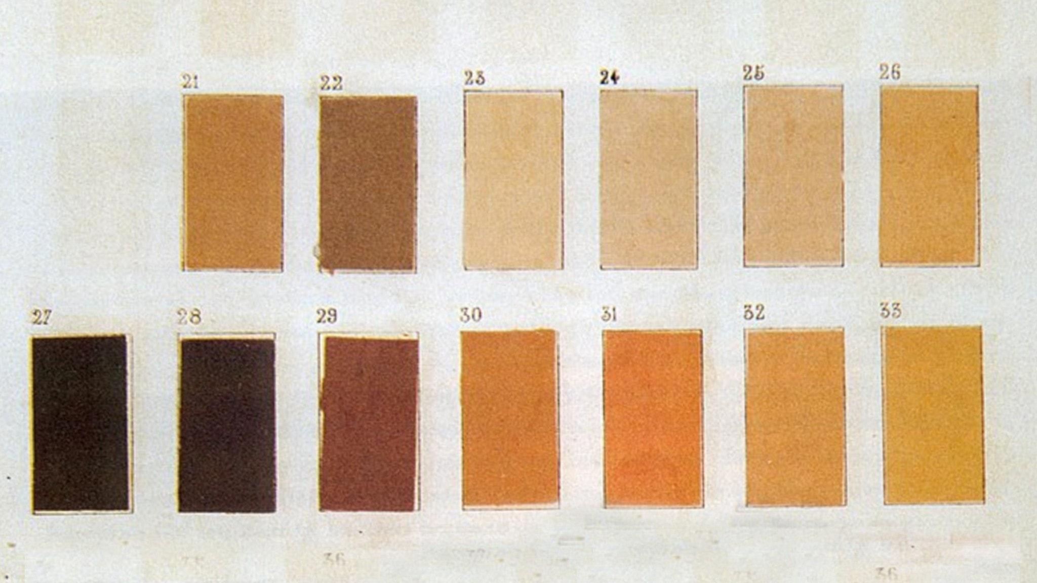 Några varianter på hudtoner enligt en antropologibok från 1879.