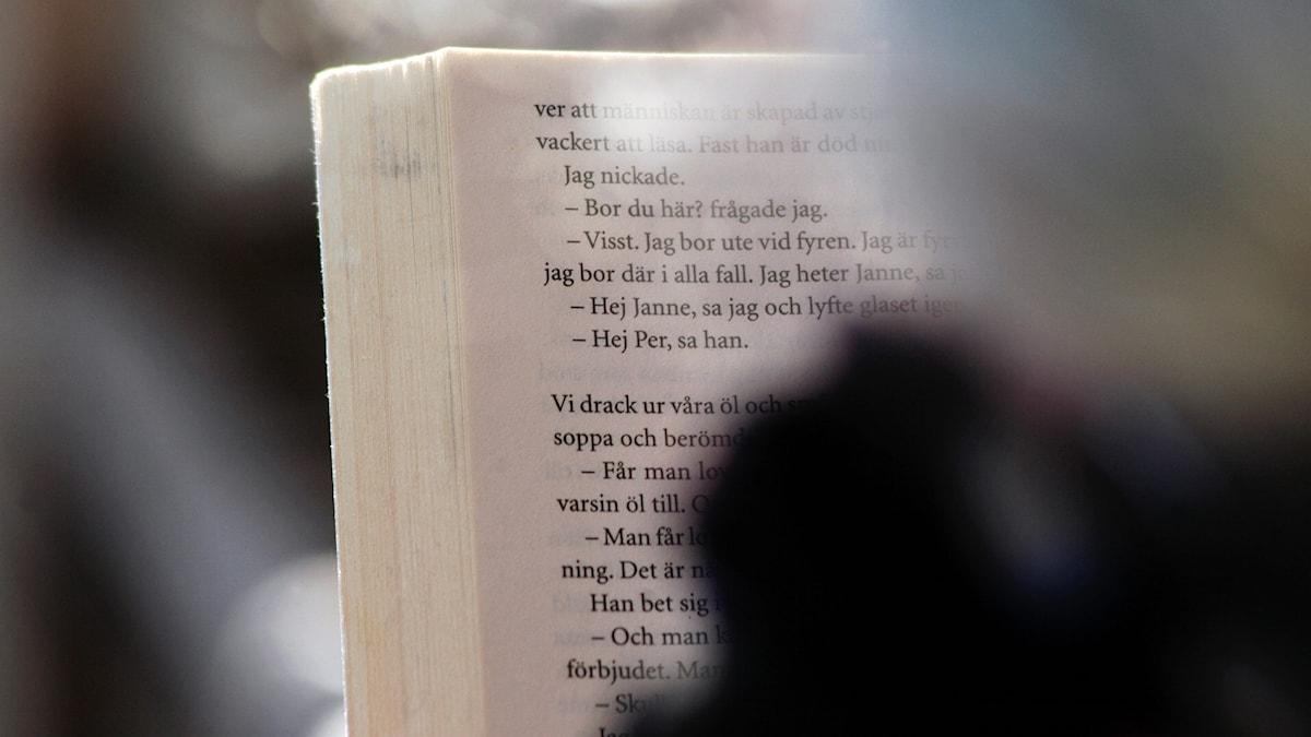 Litteratur kan trösta, menar Elisabeth Skog.