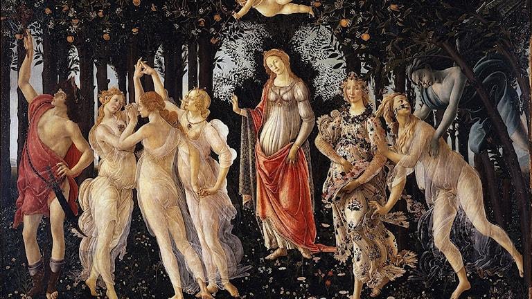 Botticellis Primavera, 1482.