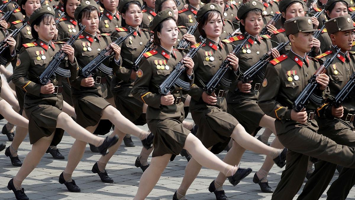 Nordkorea är ett land där staten och krigsapparaten tycks tätt sammankopplade. Men finns inte kopplingen i alla stater?