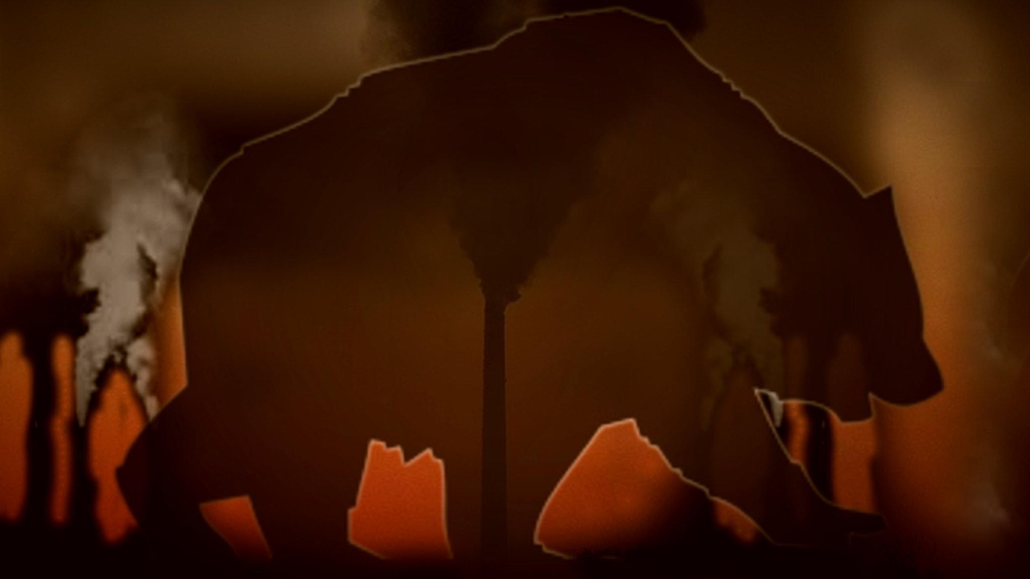 Björn och miljöförstöring.