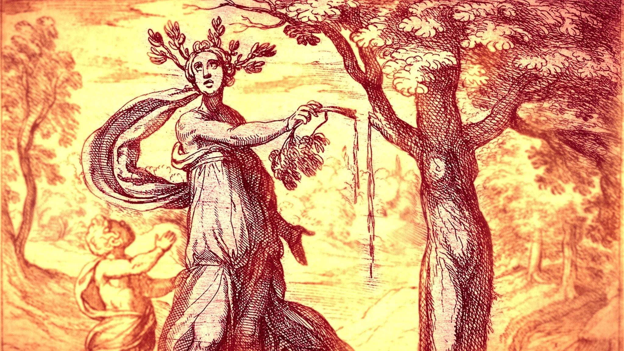 """Dryope förvandlas till ett Lotusträ, illustration från en 1600-talsutgåva av Ovidius """"Metamorfoser""""."""