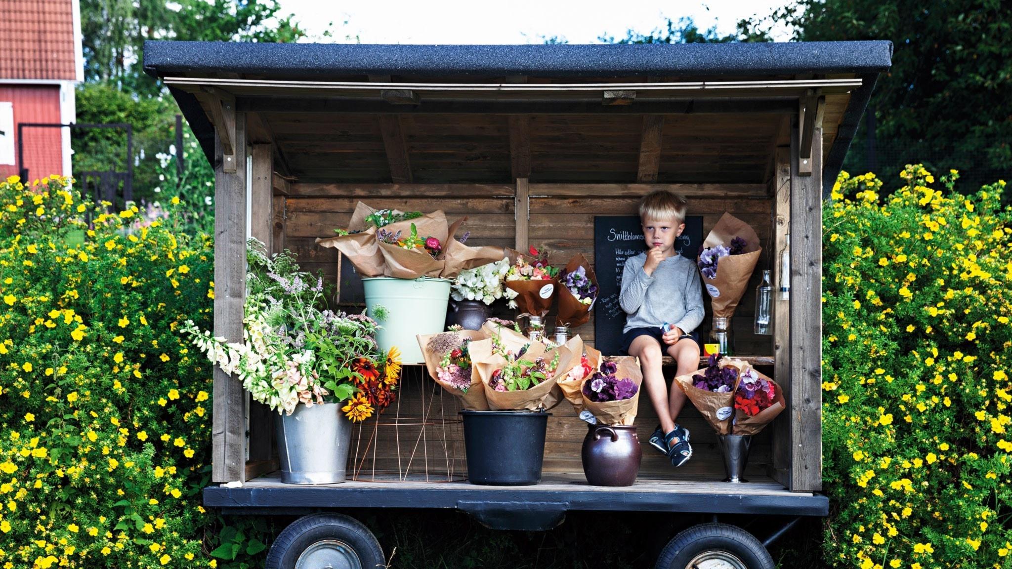 En mobil blomsterkur på hjul fylld av buketter och en liten pojke som sitter inuti.