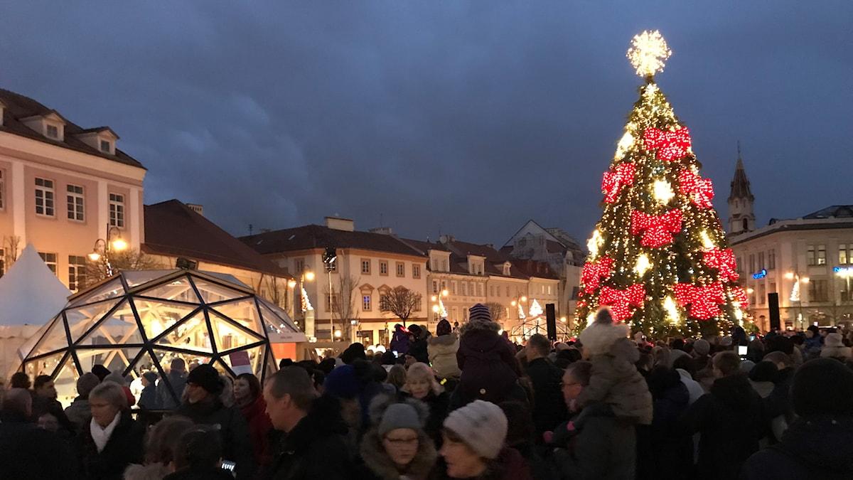 Julgranen på Stadshustorget i Vilnius