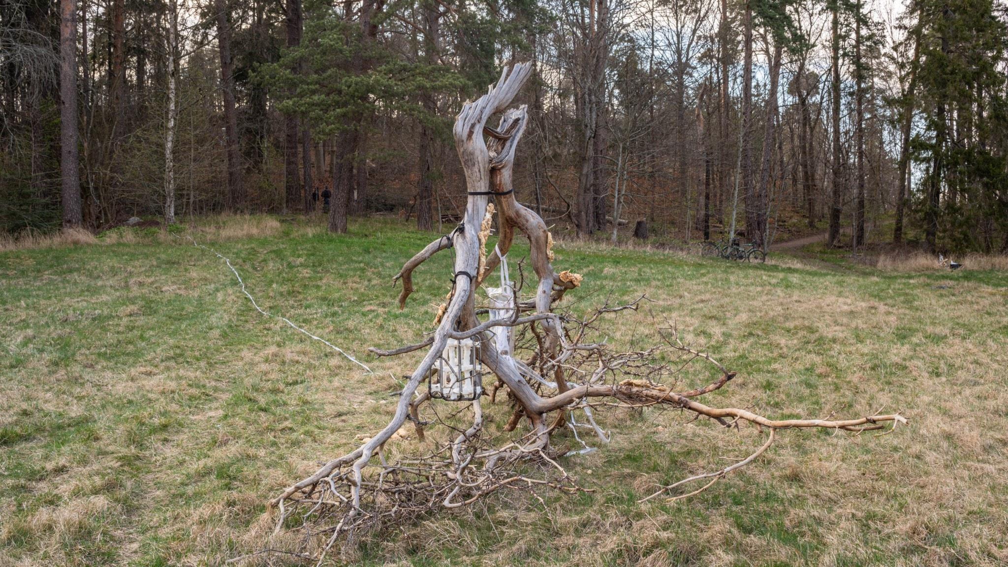 """Fettburen, skulptur av Ida Idaida på konstutställningen """"Tyst vår"""" april 2020"""