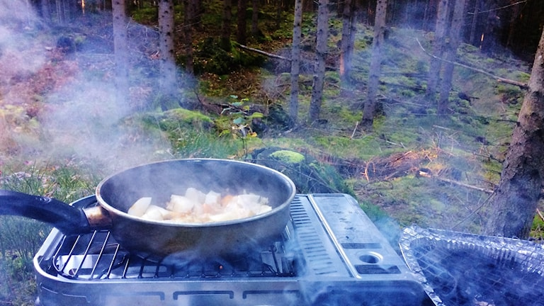 Schrodéruksen sienimuhennos / gasgrill i skogen