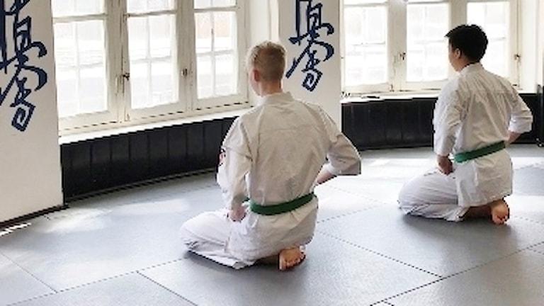 Leo Rönnebro och Oscar Hansson Pablo från  Banzai karateklub