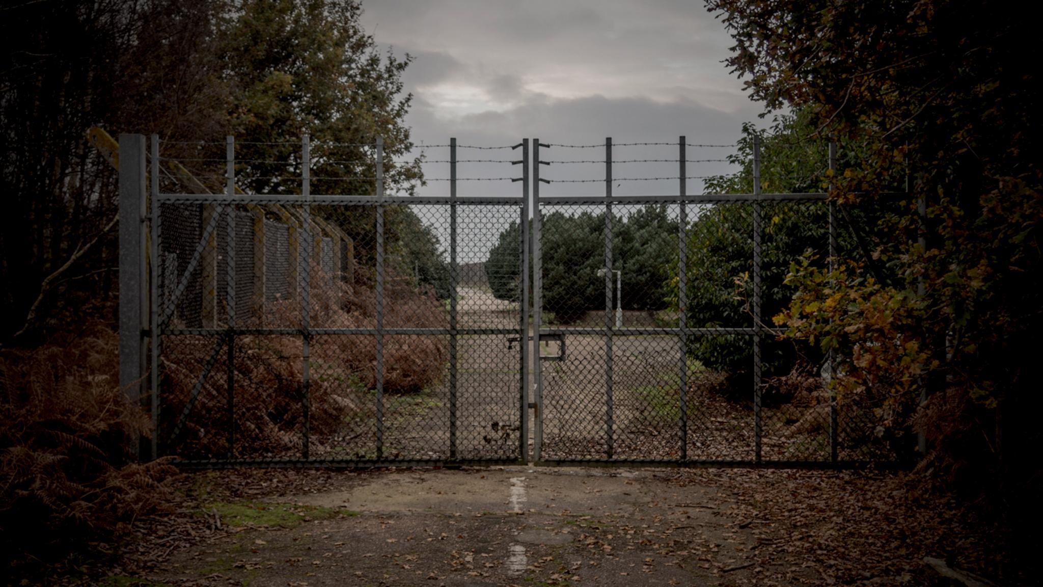 Mysteriet i Rendelshamskogen