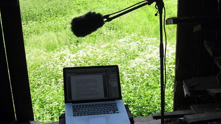 Lasse Fabel. Foto: May-Britt Rylander/Sveriges Radio